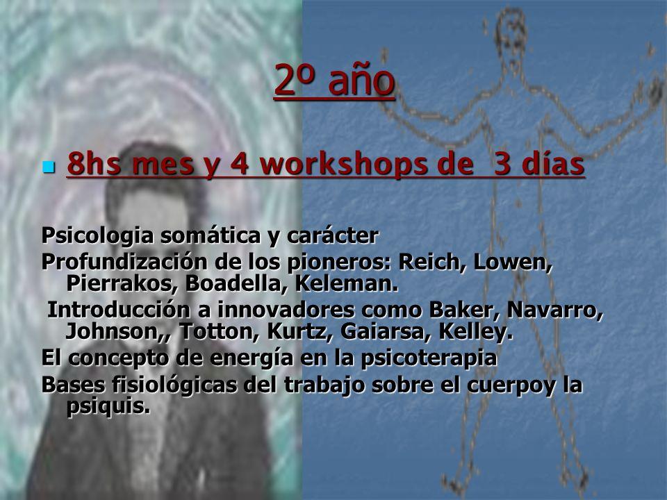 2º año 8hs mes y 4 workshops de 3 días 8hs mes y 4 workshops de 3 días Psicologia somática y carácter Profundización de los pioneros: Reich, Lowen, Pi