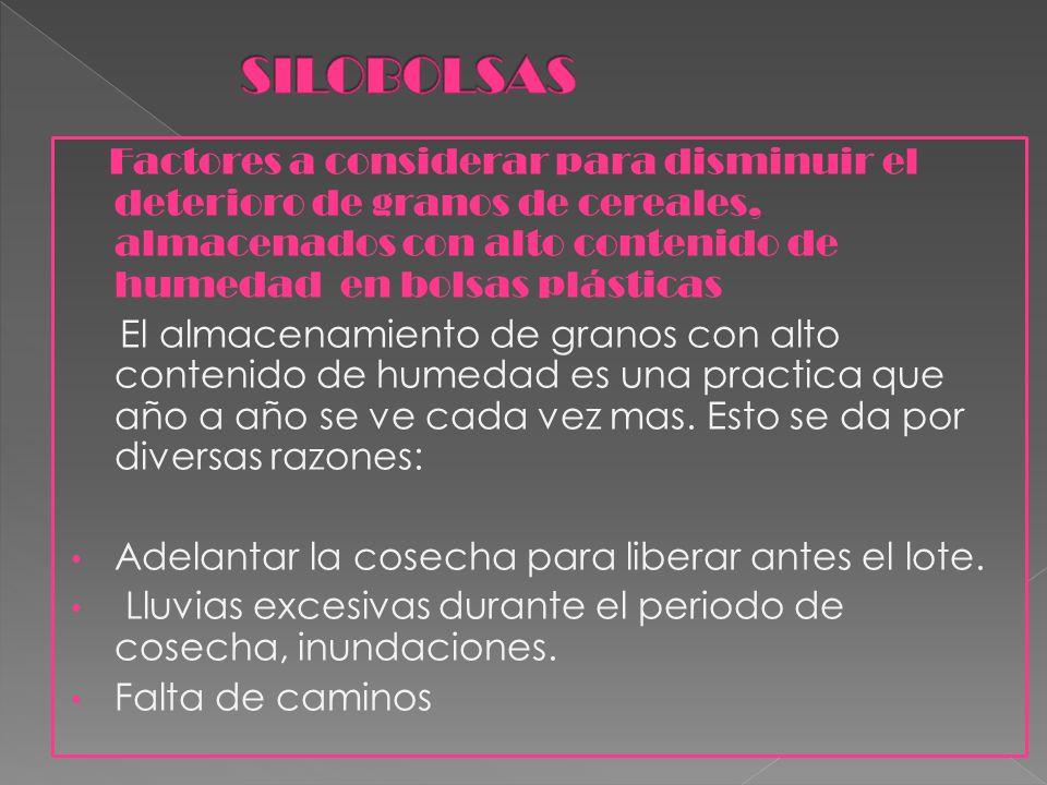 Tema: Inta expone 2011 Alumnas: Zambón Lucia, Morilla Micaela, Ibarra Luciana.