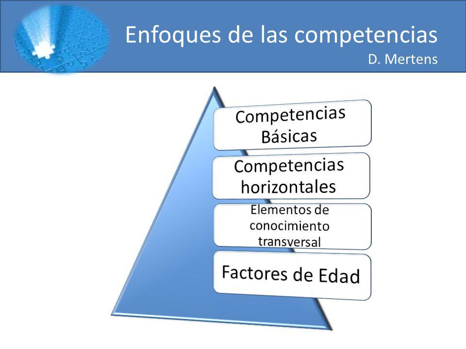 Dimensiones de la competencia Bung Competencias profesional Competencia de método Competencia social Competencia participativa