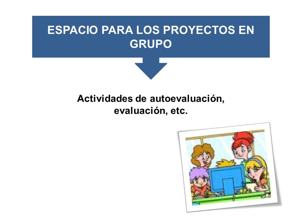 ESPACIO PARA LOS PROYECTOS EN GRUPO Actividades de autoevaluación, evaluación, etc.