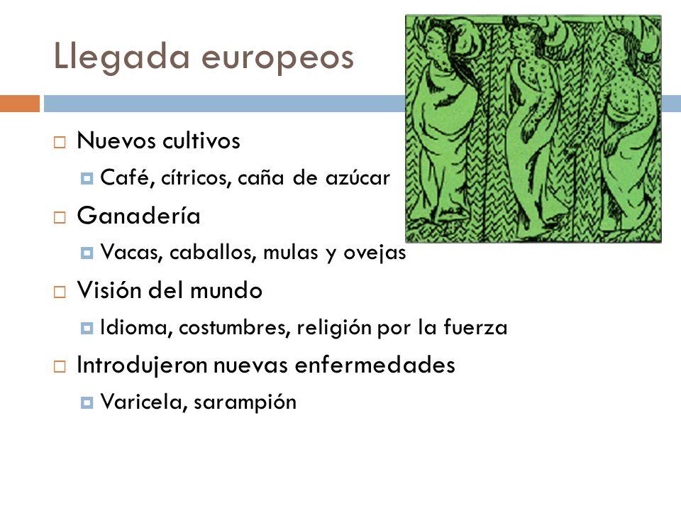 Llegada europeos Nuevos cultivos Café, cítricos, caña de azúcar Ganadería Vacas, caballos, mulas y ovejas Visión del mundo Idioma, costumbres, religión por la fuerza Introdujeron nuevas enfermedades Varicela, sarampión
