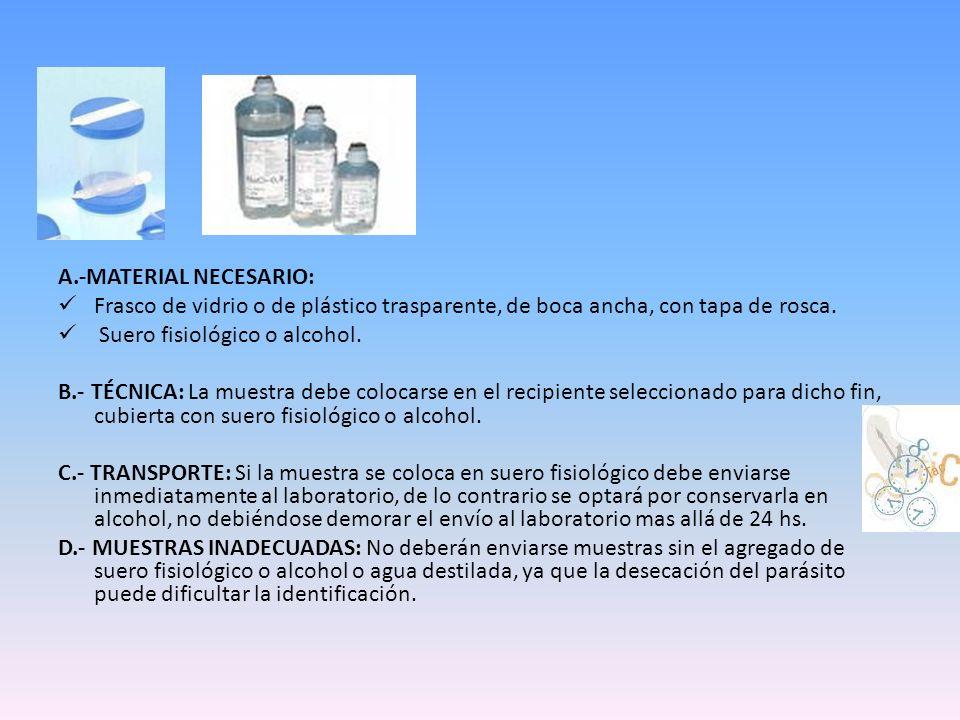 A.-MATERIAL NECESARIO: Frasco de vidrio o de plástico trasparente, de boca ancha, con tapa de rosca. Suero fisiológico o alcohol. B.- TÉCNICA: La mues