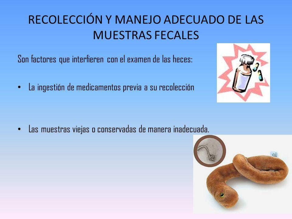 Espátula adhesiva El examen coproparasitario es útil para aquellos parásitos, en los que alguna de sus formas evolutivas se emiten mezcladas con las materias fecales.