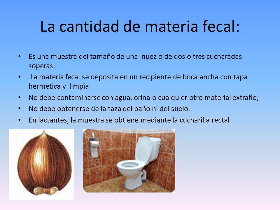 La cantidad de materia fecal: Es una muestra del tamaño de una nuez o de dos o tres cucharadas soperas. La materia fecal se deposita en un recipiente