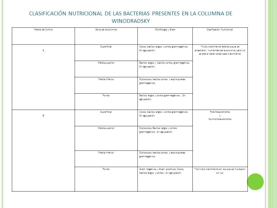 Medio de CultivoZona de la columnaMorfología y GramClasificación Nutricional A Superficial Cocos, bacilos largos y cortos gramnegativos. Sin agrupació