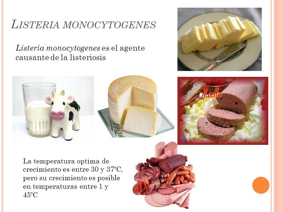 L ISTERIA MONOCYTOGENES Septicemia Meningitis Abortos Manifestaciones gastrointestinales