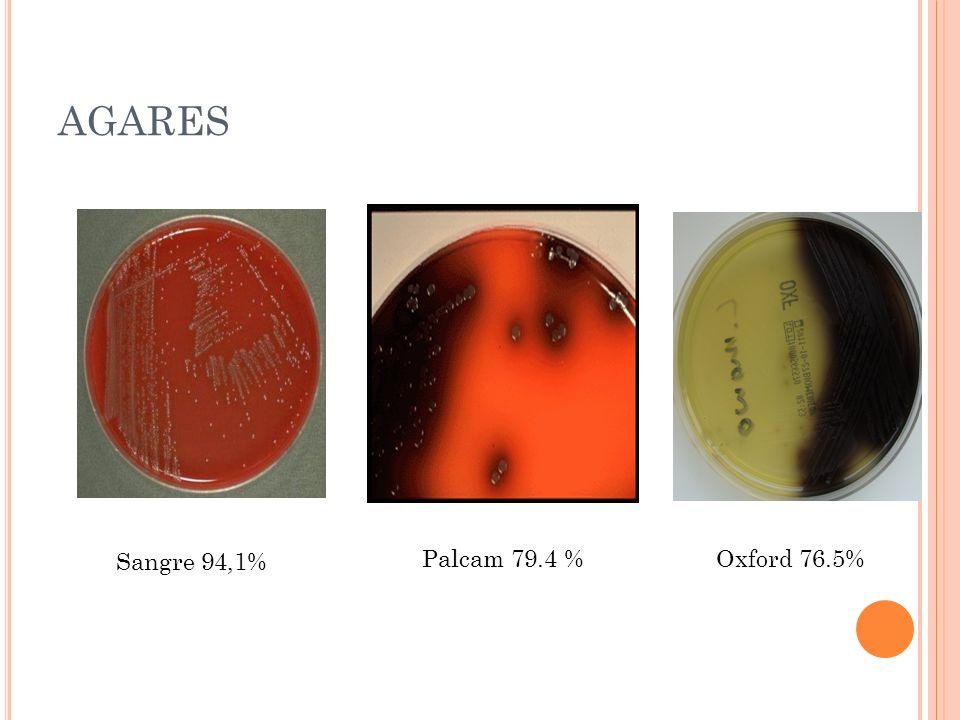 AGARES Sangre 94,1% Oxford 76.5%Palcam 79.4 %