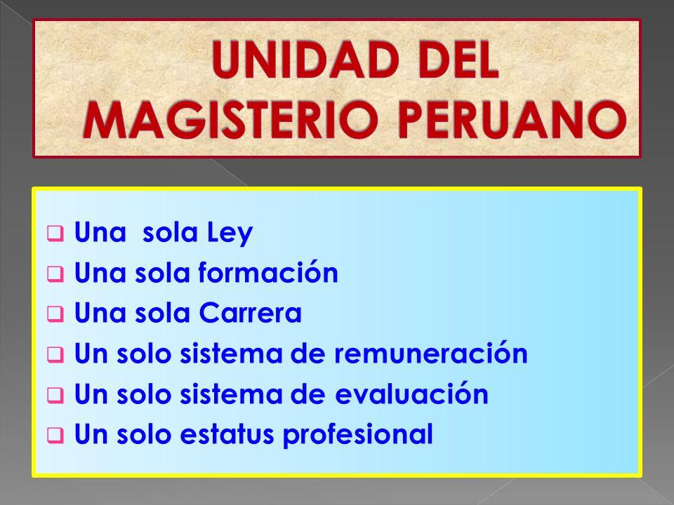 Una sola Ley Una sola formación Una sola Carrera Un solo sistema de remuneración Un solo sistema de evaluación Un solo estatus profesional