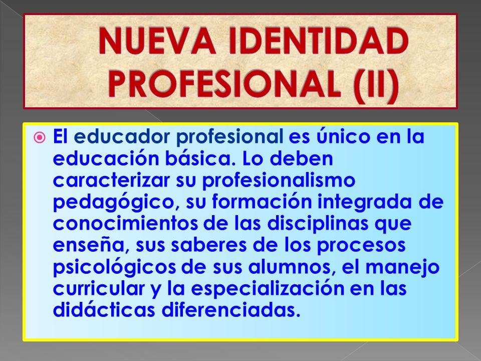 El educador profesional es único en la educación básica.