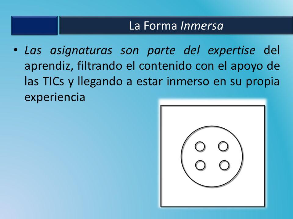 Las asignaturas son parte del expertise del aprendiz, filtrando el contenido con el apoyo de las TICs y llegando a estar inmerso en su propia experiencia La Forma Inmersa