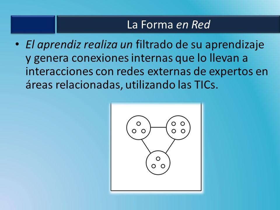 El aprendiz realiza un filtrado de su aprendizaje y genera conexiones internas que lo llevan a interacciones con redes externas de expertos en áreas r