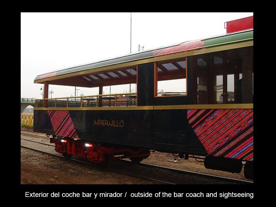 Interior del tren: bar y mirador / Interior of the train: bar and sight