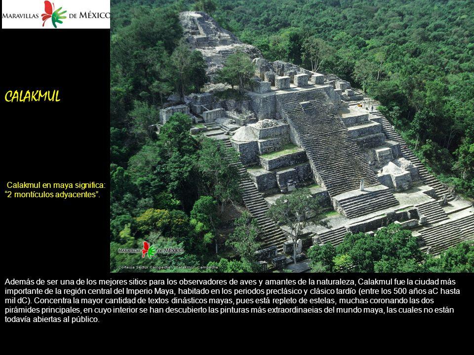 CALAKMUL Calakmul en maya significa: 2 montículos adyacentes.