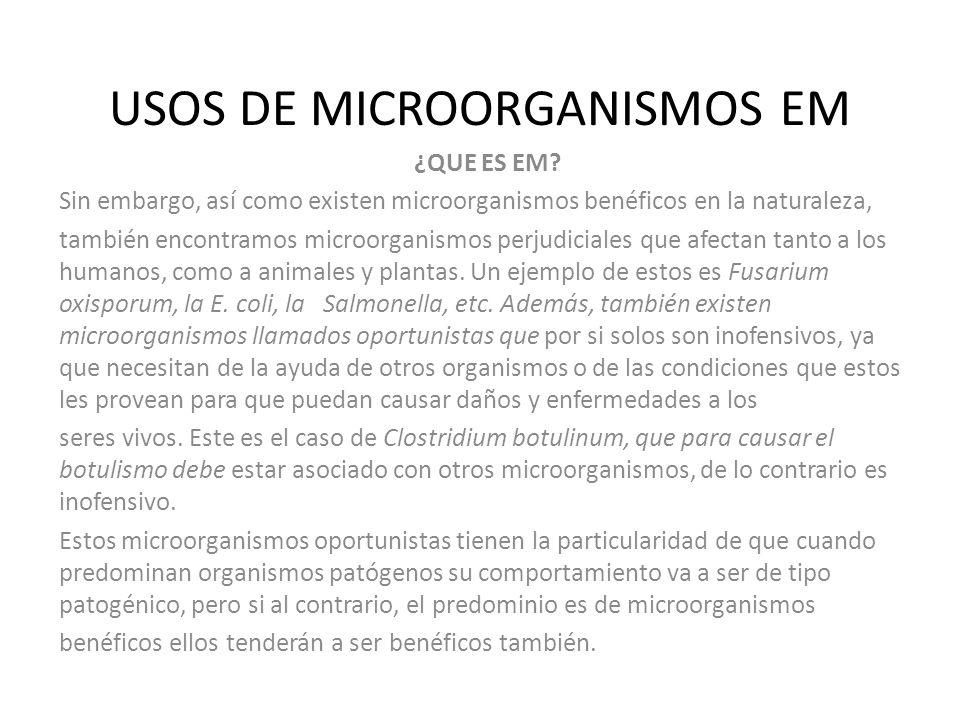 USOS DE MICROORGANISMOS EM ¿QUE ES EM? Sin embargo, así como existen microorganismos benéficos en la naturaleza, también encontramos microorganismos p