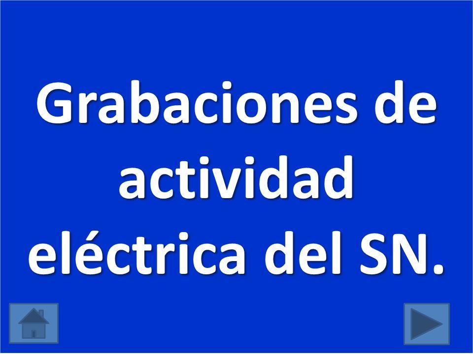Grabaciones de actividad eléctrica del SN.