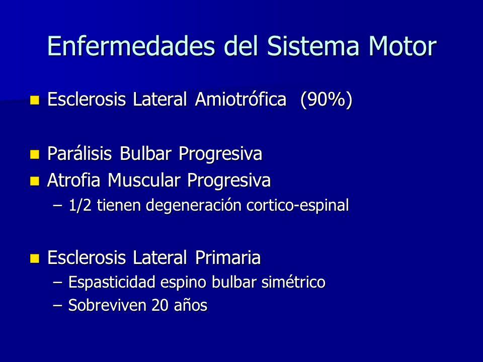 Enfermedades del Sistema Motor Esclerosis Lateral Amiotrófica (90%) Esclerosis Lateral Amiotrófica (90%) Parálisis Bulbar Progresiva Parálisis Bulbar Progresiva Atrofia Muscular Progresiva Atrofia Muscular Progresiva –1/2 tienen degeneración cortico-espinal Esclerosis Lateral Primaria Esclerosis Lateral Primaria –Espasticidad espino bulbar simétrico –Sobreviven 20 años