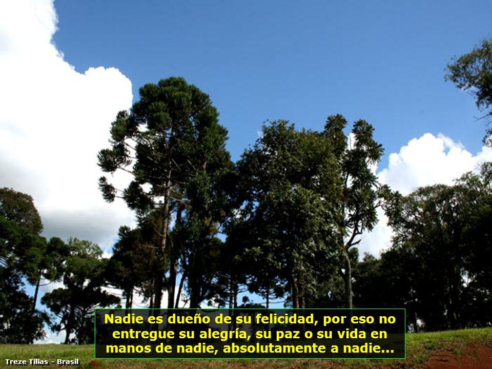 Enviado a Vitanoble por; Edison de Piracicaba - Brasil a free PPS by: Vi ta no ble A otro pps presentado por: Vitanoblepowerpoints.wordpress.com B I E