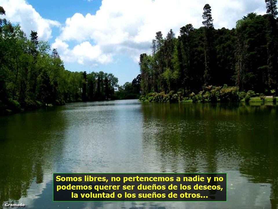 Nadie es dueño de su felicidad, por eso no entregue su alegría, su paz o su vida en manos de nadie, absolutamente a nadie... Treze Tílias - Brasil