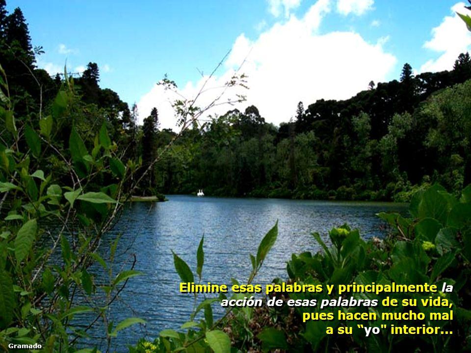 Elimine esas palabras y principalmente la acción de esas palabras de su vida, pues hacen mucho mal a su yo interior...