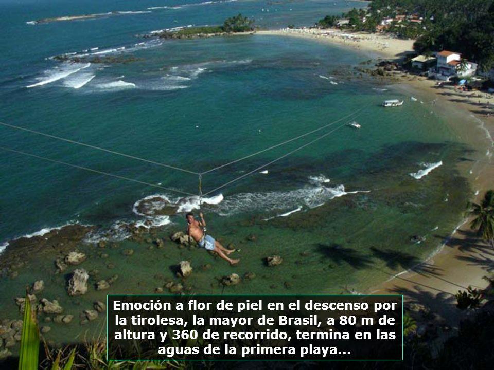 Fortaleza de San Pablo. Su construcción se inició en 1630 y es una de las mayores fortificaciones de Brasil. En la época colonial llegó a tener 51 pie