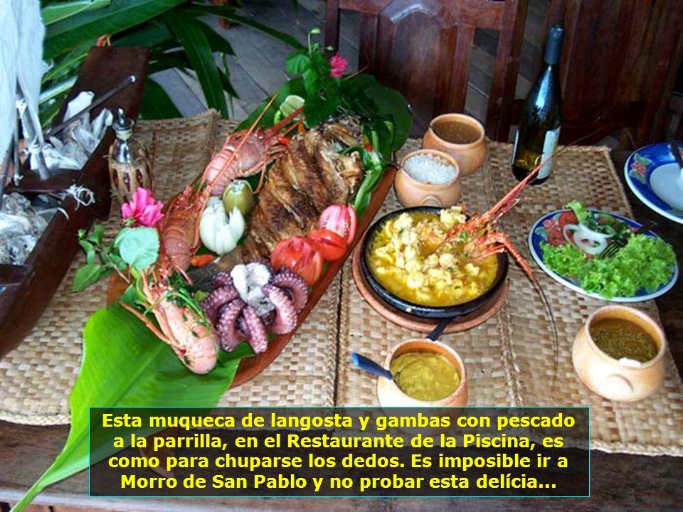 Restaurante de la Piscina, situado en la Cuarta Playa desde hace mas de 28 años y uno de los mas cómodos rincones de Morro de San Pablo, con un ambien