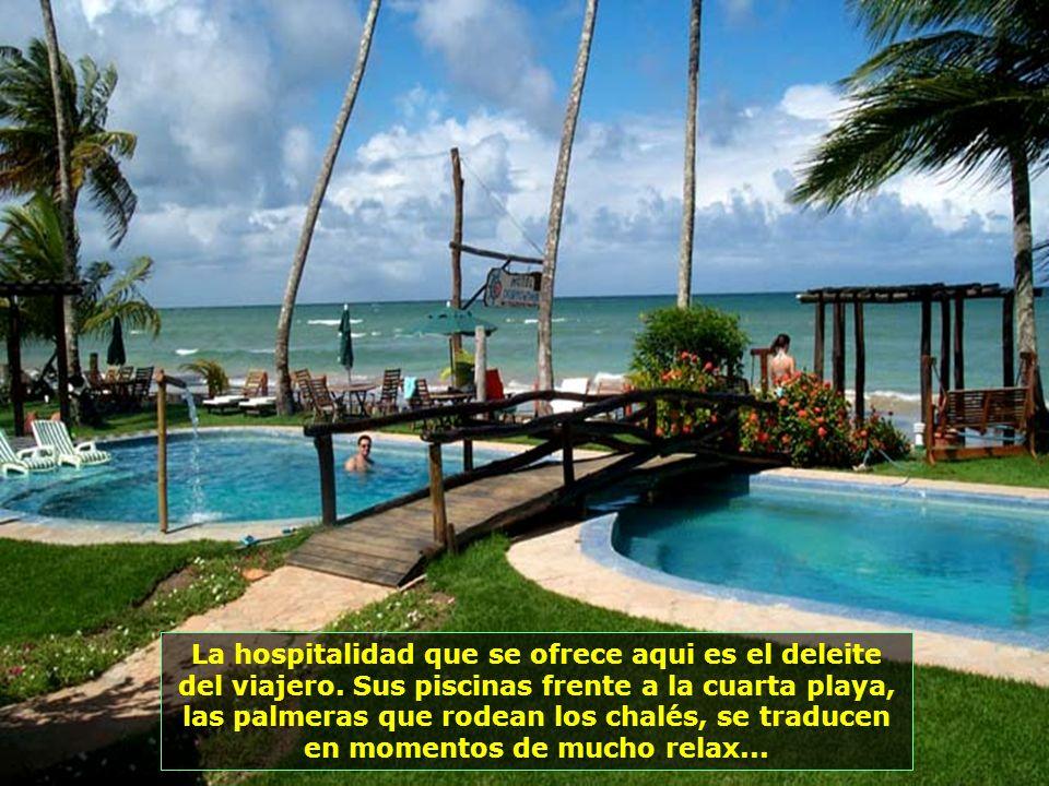 En medio de este paraíso que es Morro de San Pablo, está este otro pequeño paraíso, el Hotel Puerto del Zimbo Small Resort...