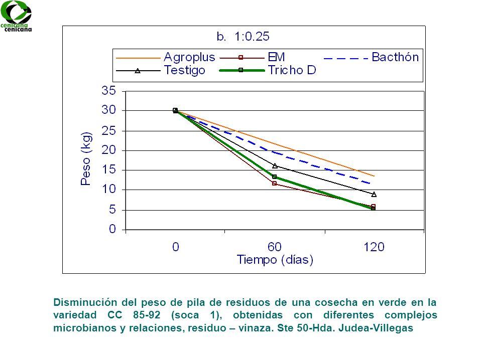 Disminución del peso de pila de residuos de una cosecha en verde en la variedad CC 85-92 (soca 1), obtenidas con diferentes complejos microbianos y re