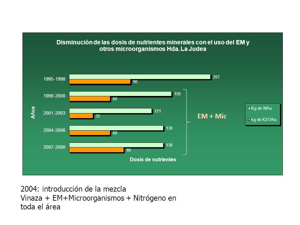 2004: introducción de la mezcla Vinaza + EM+Microorganismos + Nitrógeno en toda el área EM + Mic