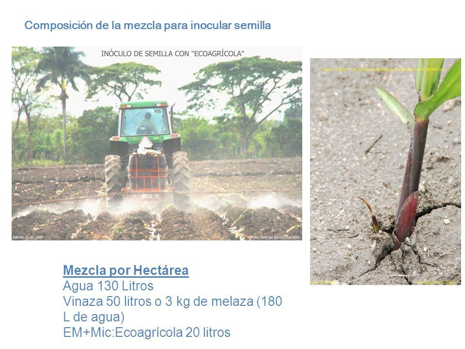 Composición de la mezcla para inocular semilla Mezcla por Hectárea Agua 130 Litros Vinaza 50 litros o 3 kg de melaza (180 L de agua) EM+Mic:Ecoagrícol