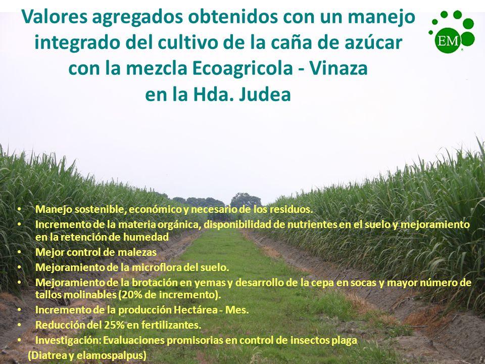Valores agregados obtenidos con un manejo integrado del cultivo de la caña de azúcar con la mezcla Ecoagricola - Vinaza en la Hda. Judea Manejo sosten