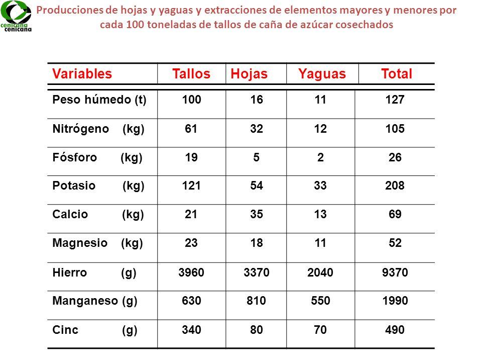 Producciones de hojas y yaguas y extracciones de elementos mayores y menores por cada 100 toneladas de tallos de caña de azúcar cosechados VariablesTa