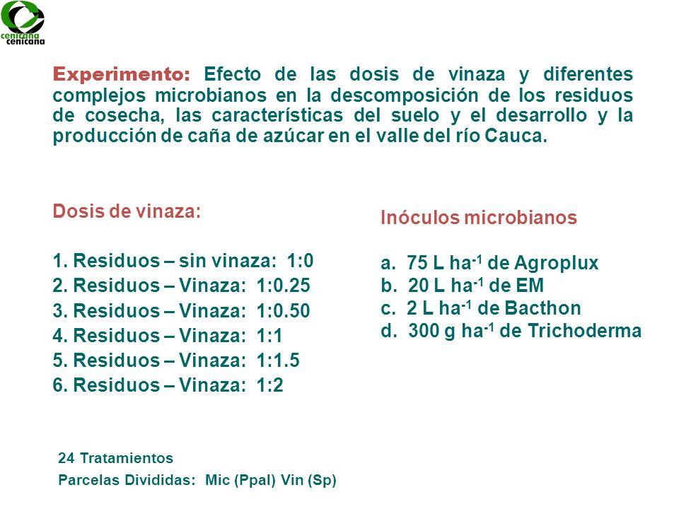 Dosis de vinaza: 1. Residuos – sin vinaza: 1:0 2. Residuos – Vinaza: 1:0.25 3. Residuos – Vinaza: 1:0.50 4. Residuos – Vinaza: 1:1 5. Residuos – Vinaz
