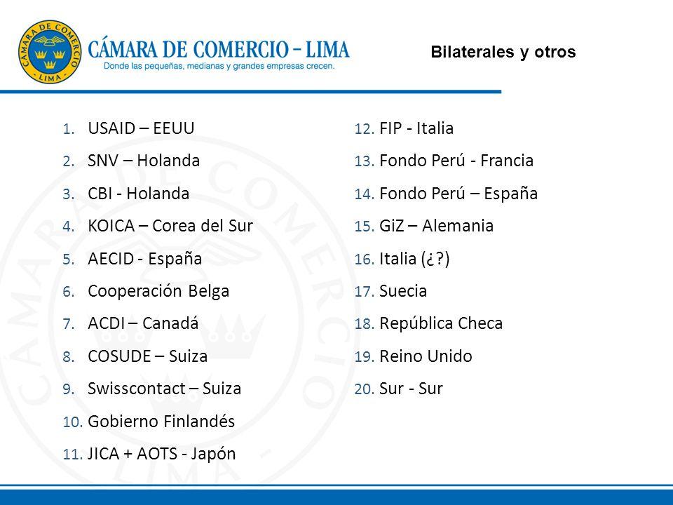 Bilaterales y otros 1. USAID – EEUU 2. SNV – Holanda 3.