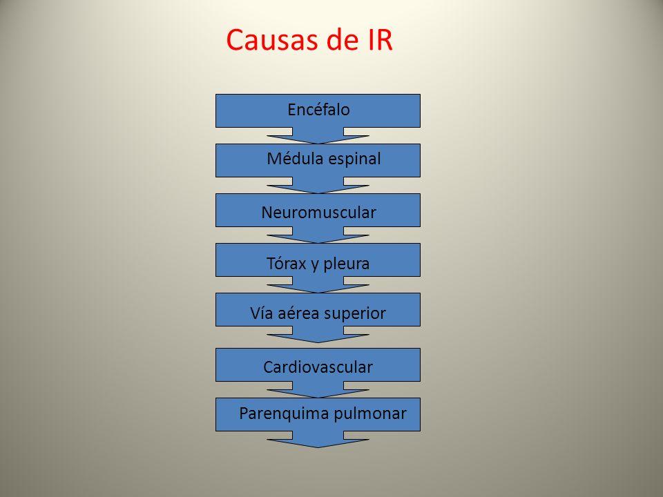 Causas de IR Encéfalo Médula espinal Neuromuscular Tórax y pleura Vía aérea superior Cardiovascular Parenquima pulmonar
