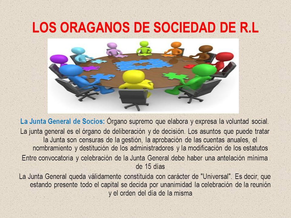 LOS ORAGANOS DE SOCIEDAD DE R.L La Junta General de Socios: Órgano supremo que elabora y expresa la voluntad social. La junta general es el órgano de