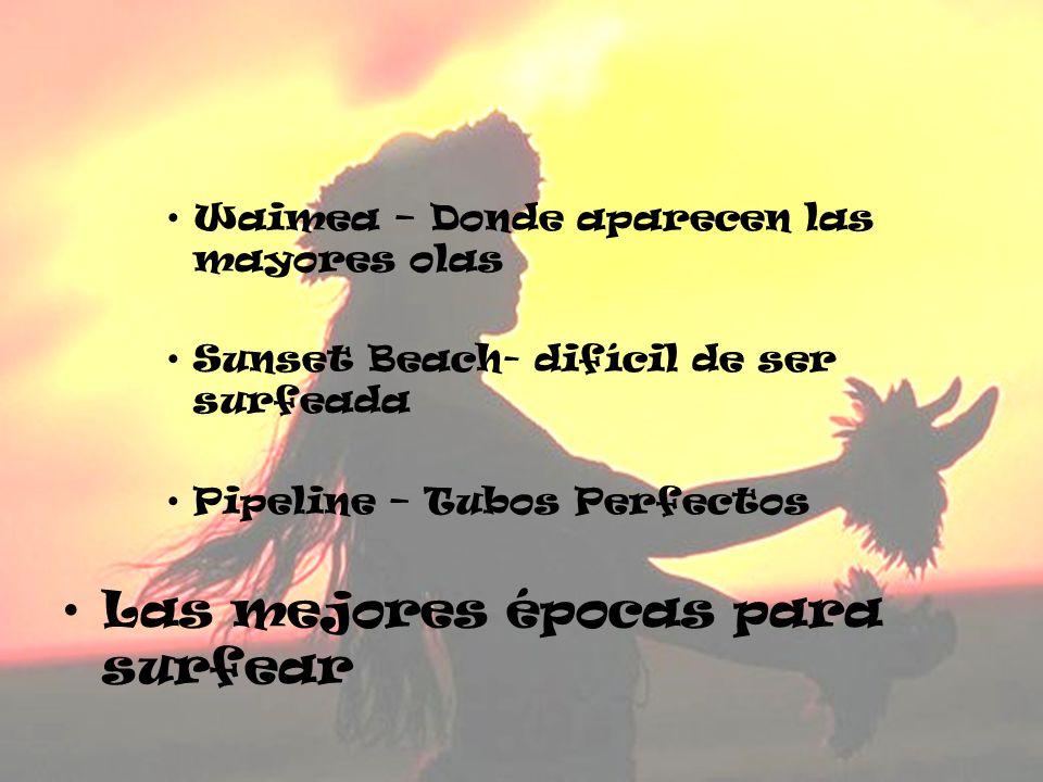 Waimea – Donde aparecen las mayores olas Sunset Beach- difícil de ser surfeada Pipeline – Tubos Perfectos Las mejores épocas para surfear