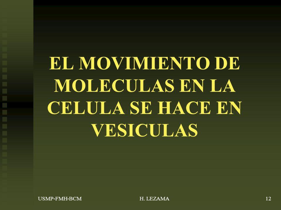 USMP-FMH-BCMH. LEZAMA12 EL MOVIMIENTO DE MOLECULAS EN LA CELULA SE HACE EN VESICULAS