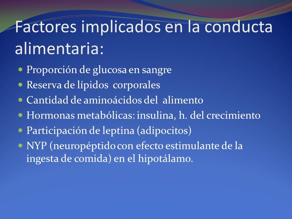Factores implicados en la conducta alimentaria: Proporción de glucosa en sangre Reserva de lípidos corporales Cantidad de aminoácidos del alimento Hormonas metabólicas: insulina, h.