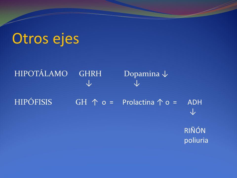 Otros ejes HIPOTÁLAMO GHRH Dopamina HIPÓFISIS GH o = Prolactina o = ADH RIÑÓN poliuria