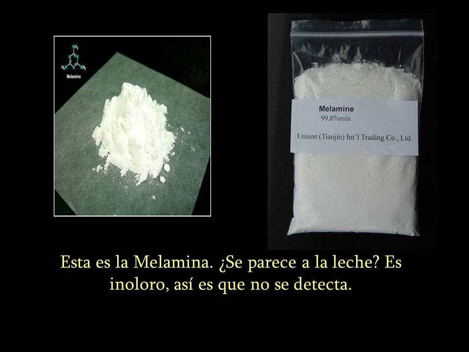 Esta es la Melamina. ¿Se parece a la leche? Es inoloro, así es que no se detecta.