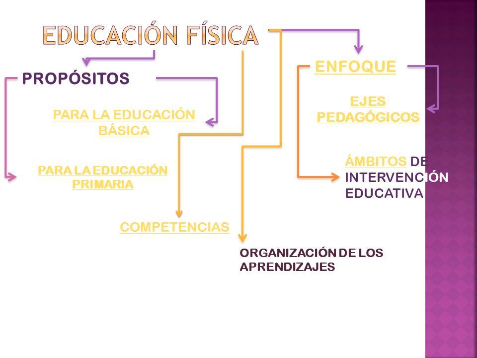 PROPÓSITOS PARA LA EDUCACIÓN BÁSICA PARA LA EDUCACIÓN PRIMARIA ENFOQUE EJES PEDAGÓGICOS ÁMBITOSÁMBITOS DE INTERVENCIÓN EDUCATIVA COMPETENCIAS ORGANIZA