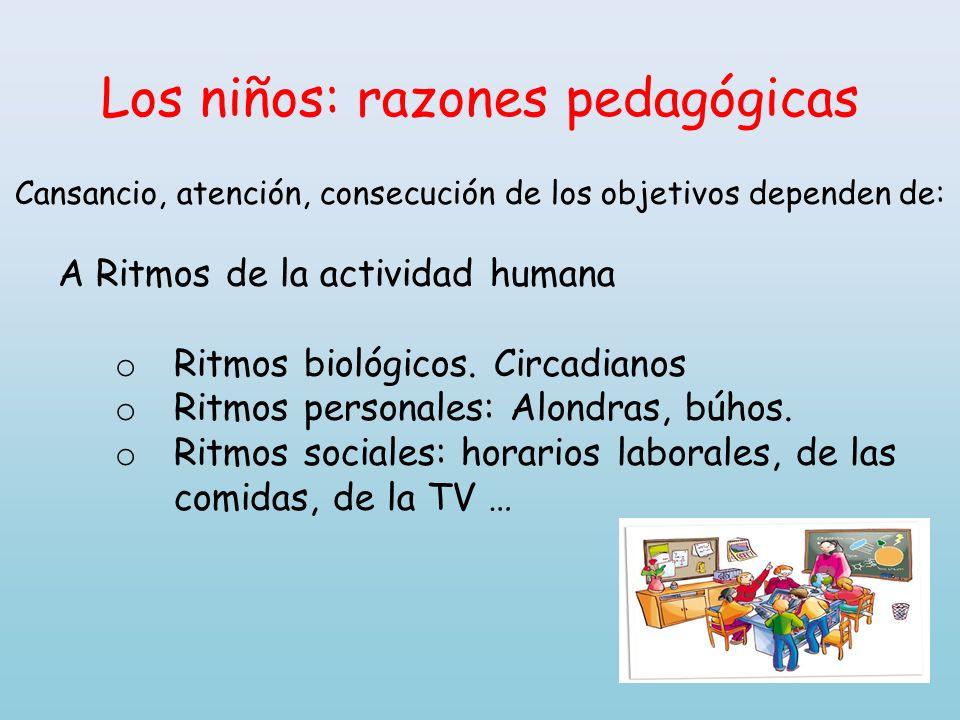 Los niños: razones pedagógicas Cansancio, atención, consecución de los objetivos dependen de: A Ritmos de la actividad humana o Ritmos biológicos. Cir