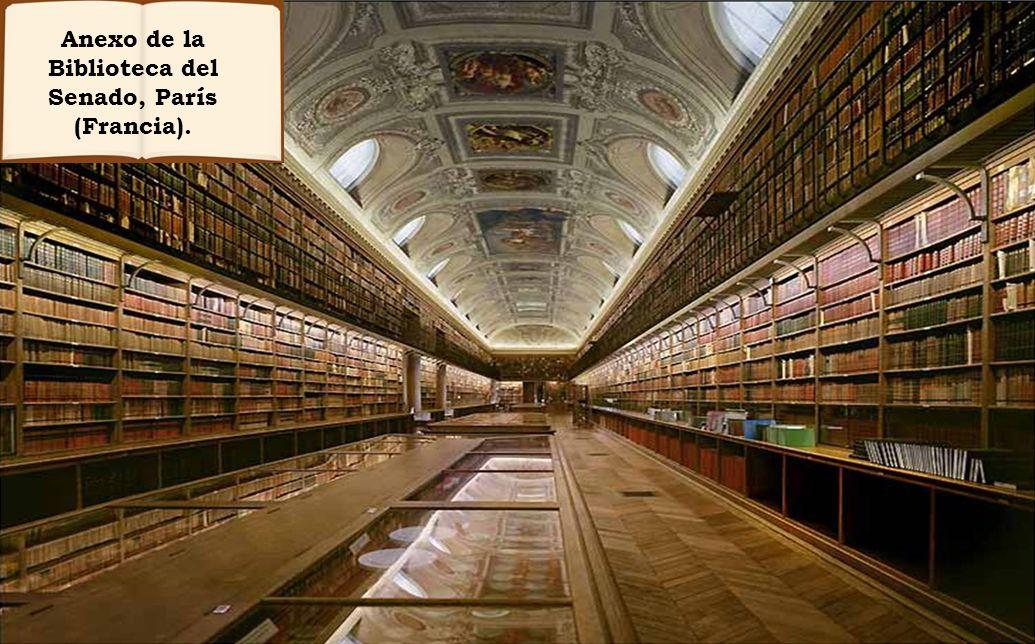 Siempre imaginé que el Paraíso sería algún tipo de biblioteca.