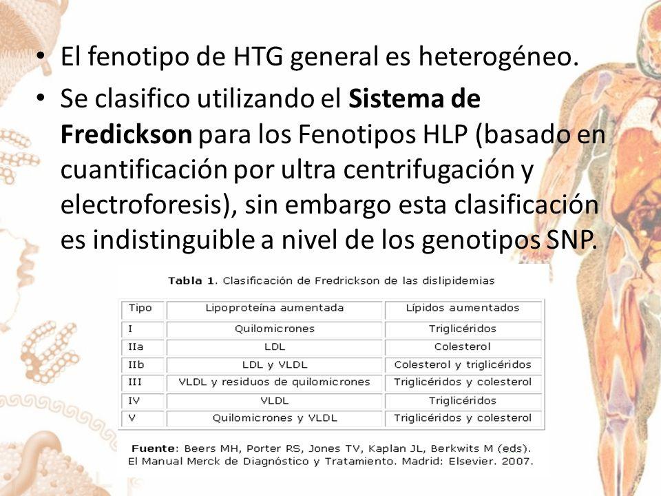 El fenotipo de HTG general es heterogéneo.