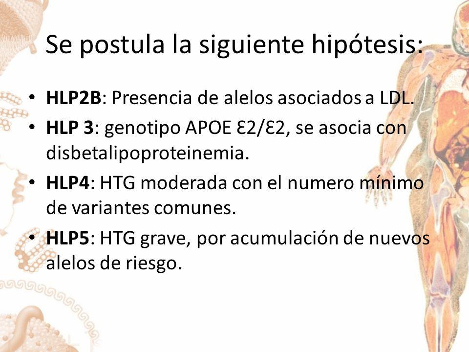 Se postula la siguiente hipótesis: HLP2B: Presencia de alelos asociados a LDL.