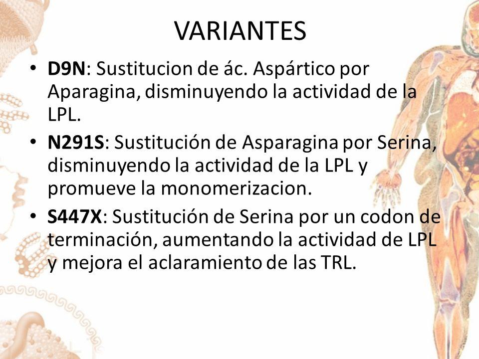 VARIANTES D9N: Sustitucion de ác.Aspártico por Aparagina, disminuyendo la actividad de la LPL.