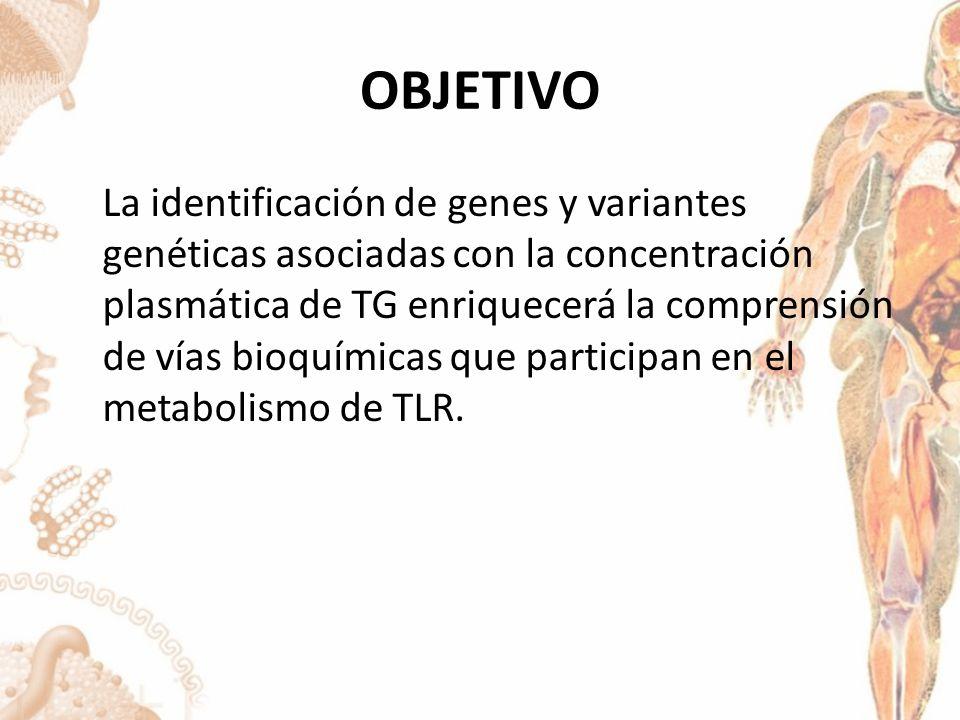 OTROS ENFOQUES VINCULACION Y ESTUDIOS FAMILIARES Factor de transcripción 1 upstream: Es el enfoque mas potente para trastornos en los que un solo gen explica completamente el fenotipo.