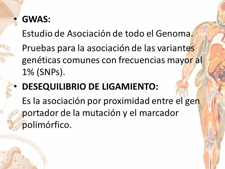 GWAS: Estudio de Asociación de todo el Genoma.