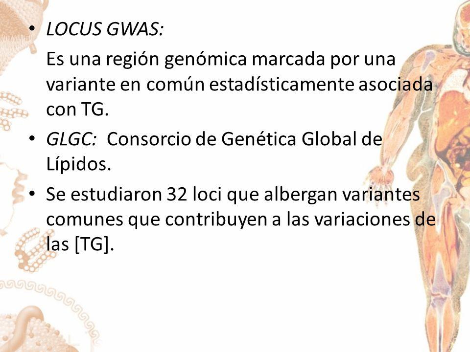 PLEIOTROPISMO Participación de un solo gen o variante genética en múltiples fenotipos biológicos.