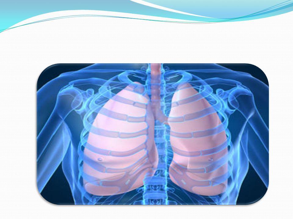 Siempre combinar datos semiológicos en el examen En hemotórax y neumotórax el murmullo vesicular y el frémito, están disminuidos, hay disnea, taquipnea, pero cambia la percusión y la palpación, hay cianosis en neumotórax y palidez en hemotórax.